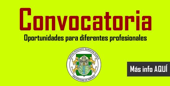 Universidad de nari o abre convocatoria para contratar for Convocatoria docentes exterior