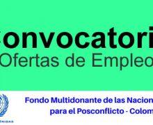 Naciones Unidas Colombia requiere Profesional en ciencias administrativas o sociales