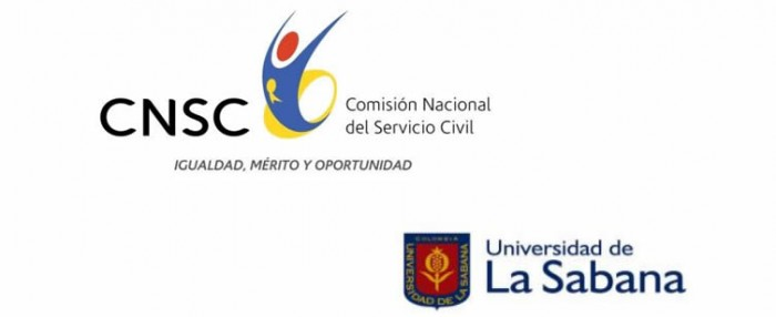cnsc-entrevistas-docentes
