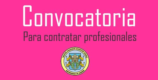 Universidad de nari o abre convocatoria para vincular for Convocatoria para docentes