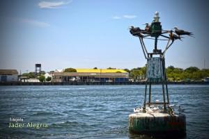 Vista de la Bahía de Tumaco - Fotografía de Jader Alegría