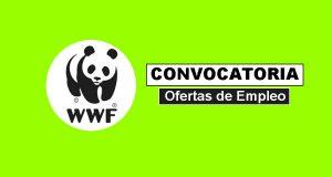 Empleo en WWF requiere profesionale