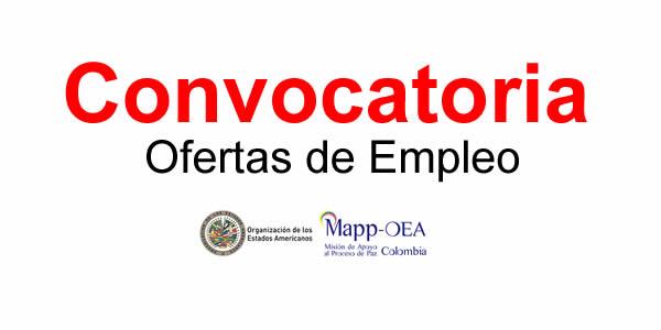 MAPP OEA requiere profesionales