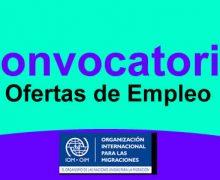 OIM abre 75 vacantes de empleo para profesionales en Trabajo Social, psicología, antropología, sociología